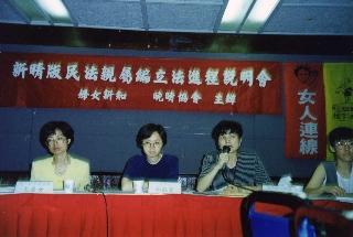 1995年新晴版民法親屬編立法進程說明會